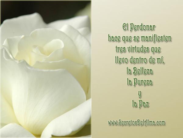 Reflexiones sobre el perdon